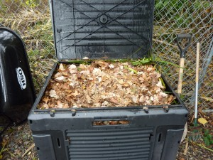 adding leaves to compost