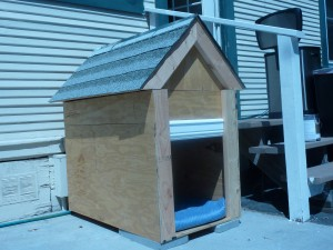 dog house made out of scrap wood
