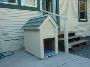 painted dog house